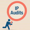 IP Audits